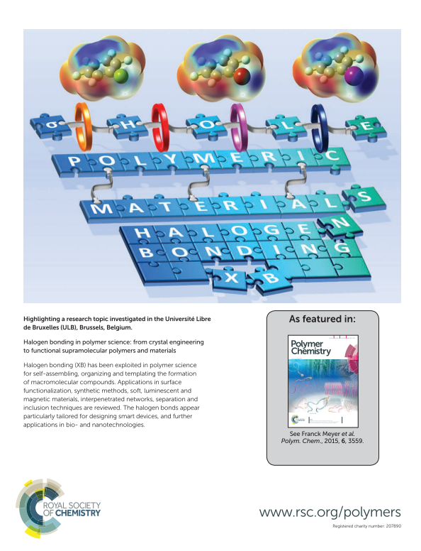 Polym Chem 2015